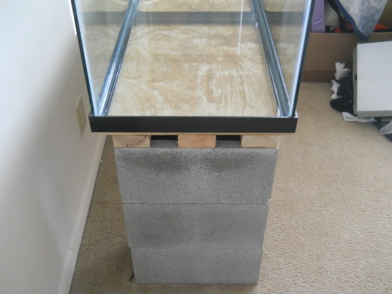 Can You Use Concrete Blocks As An Aquarium Stand Aquarium Advice Aquarium Forum Community