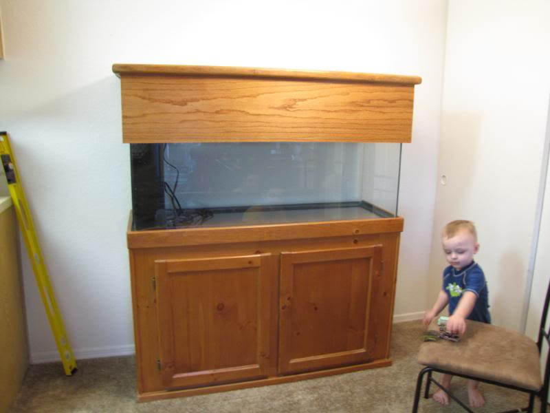 not to bad but to plain for me . the wife also did not like the color so we decided to re stain it to a little darker color but wanted to ... & simple diy 55 gal canopy and rebuild of stand - Aquarium Advice ...