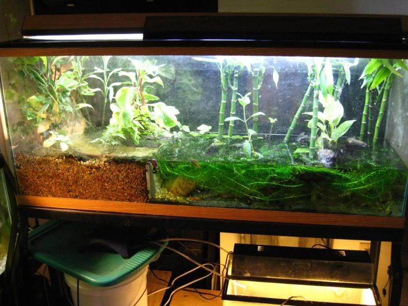 Underwater Filters And Sand Aquarium