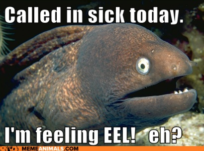 Click image for larger version  Name:Sick EEL.jpg Views:215 Size:59.9 KB ID:101704
