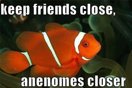 Click image for larger version  Name:f-Funny-Clown-Fish-Joke-9423.jpg Views:503 Size:28.0 KB ID:101707