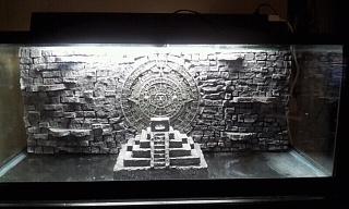 DIY 3D Mayan Background With Pyramid   Aquarium Advice   Aquarium