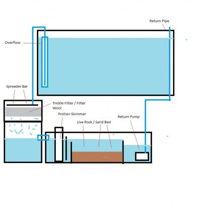Click image for larger version  Name:Sump Setup.jpg Views:123 Size:31.3 KB ID:117968