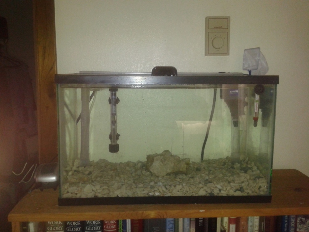 Click image for larger version  Name:myfist tank.jpg Views:39 Size:167.1 KB ID:123545