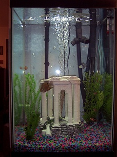 Click image for larger version  Name:Fish Tank.jpg Views:129 Size:57.1 KB ID:13182