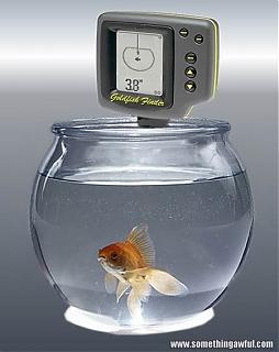 Click image for larger version  Name:scrutinizer_goldfish.jpeg Views:147 Size:26.4 KB ID:1326
