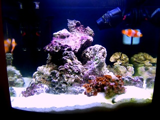Click image for larger version  Name:fts daytime.jpg Views:905 Size:78.9 KB ID:14354
