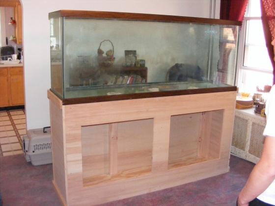 Click image for larger version  Name:Fish Tank 049.jpg Views:56 Size:72.7 KB ID:14521