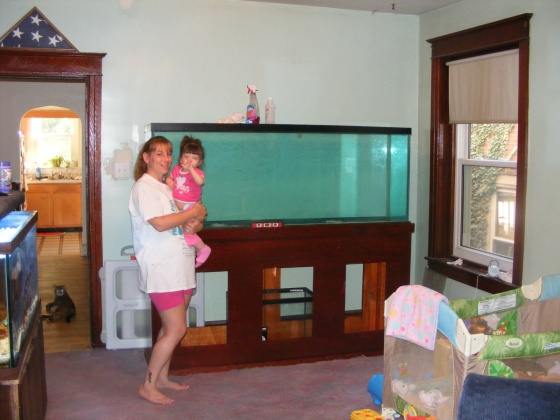 Click image for larger version  Name:Fish Tank 071.jpg Views:29 Size:80.1 KB ID:15008