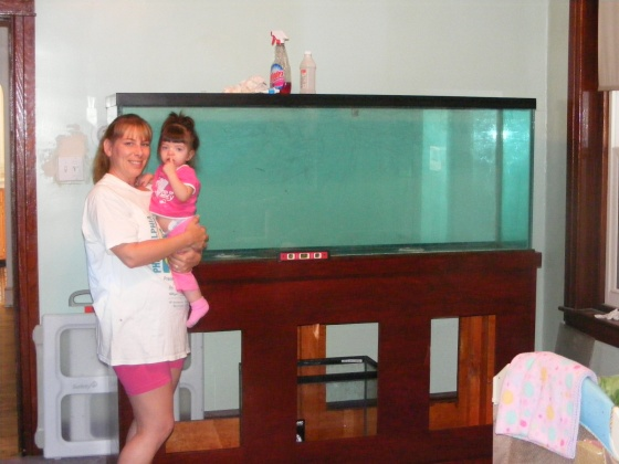 Click image for larger version  Name:Fish Tank 070.jpg Views:33 Size:70.8 KB ID:15009