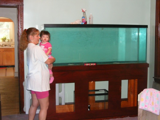 Click image for larger version  Name:Fish Tank 067.jpg Views:32 Size:68.9 KB ID:15010
