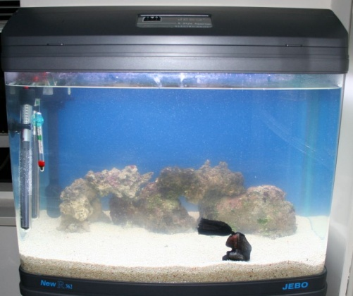 Click image for larger version  Name:tank1.jpg Views:73 Size:65.1 KB ID:15127
