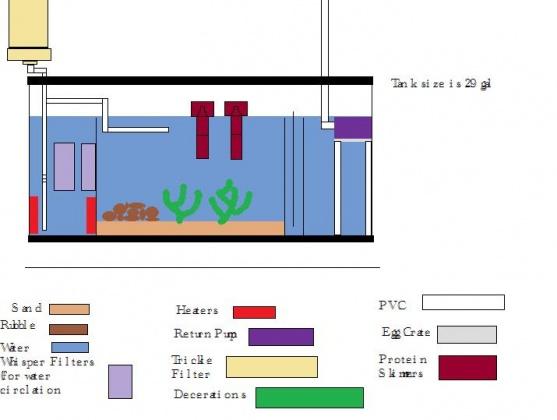 Click image for larger version  Name:Fuge plan.jpg Views:569 Size:48.9 KB ID:15497
