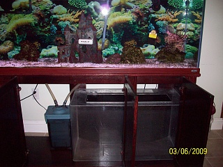 Click image for larger version  Name:sump set up 002.jpg Views:74 Size:73.5 KB ID:17795