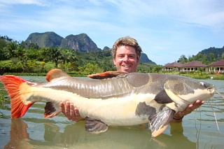 Click image for larger version  Name:october2009_0085_Amazon_red_tail_catfish_Scott_Morely.jpeg Views:8982 Size:51.1 KB ID:184302