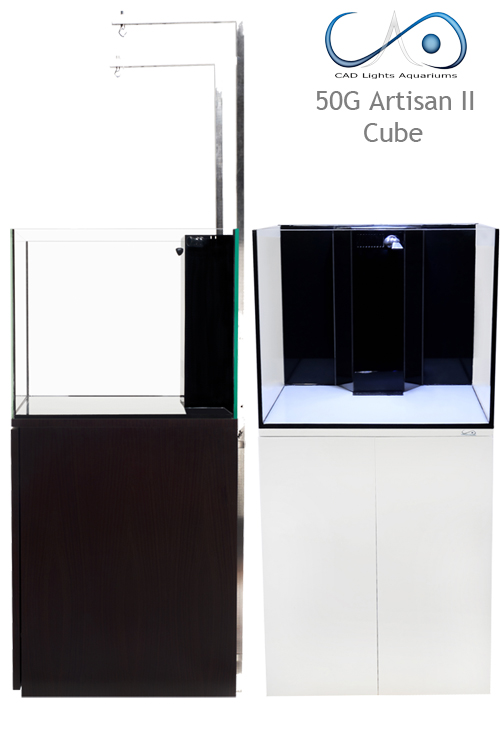 Click image for larger version  Name:50G Artisan II cubes.jpg Views:206 Size:132.8 KB ID:184303