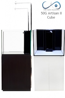 Click image for larger version  Name:50G Artisan II cubes.jpg Views:222 Size:132.8 KB ID:184303