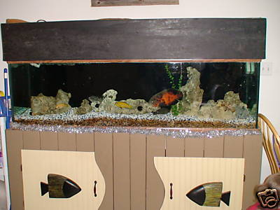 Click image for larger version  Name:125 gallon purchased.JPG Views:156 Size:21.2 KB ID:18440