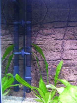Click image for larger version  Name:Fish Tank 002small.jpg Views:67 Size:59.4 KB ID:18844