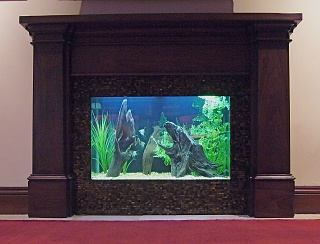 Click image for larger version  Name:FishwMantle.jpg Views:213 Size:74.5 KB ID:20055
