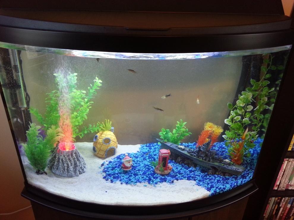 Tank - Half Sand Half Gravel - How To with Pictures - Aquarium Advice - Aquarium Forum Community