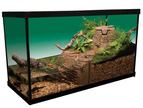 Divide An Aquarium Half Water Land