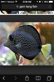 Click image for larger version  Name:ImageUploadedByAquarium Advice1394006964.231233.jpg Views:102 Size:149.3 KB ID:226017