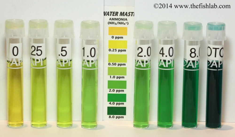 Click image for larger version  Name:ammonia chart smaller.jpg Views:41 Size:134.3 KB ID:229918