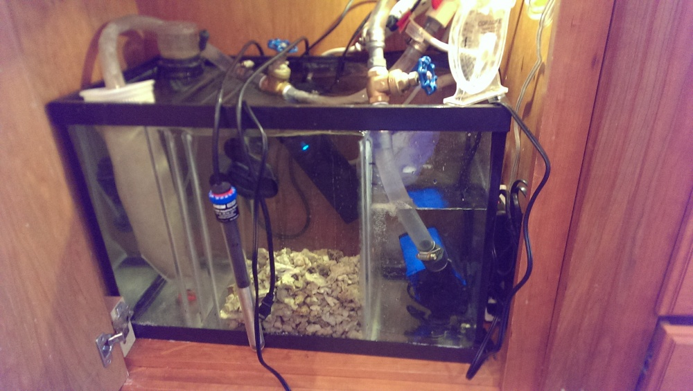 Click image for larger version  Name:tank2.jpg Views:113 Size:191.6 KB ID:240723
