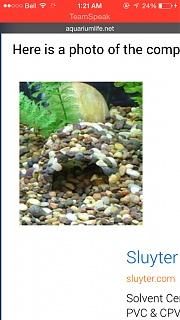 Click image for larger version  Name:ImageUploadedByAquarium Advice1412140944.756089.jpg Views:70 Size:132.0 KB ID:251468