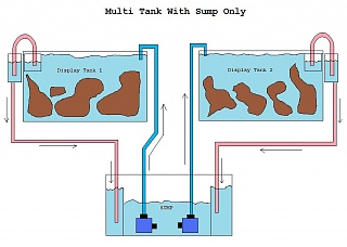 Click image for larger version  Name:multi tank with sump only.jpg Views:2025 Size:56.0 KB ID:26684
