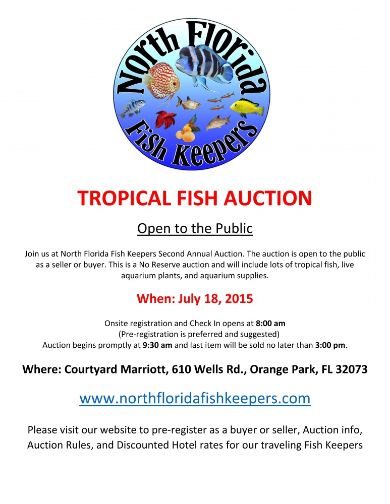 Click image for larger version  Name:2015-TROPICAL-FISH-AUCTIONpicture.jpg Views:38 Size:209.9 KB ID:269950