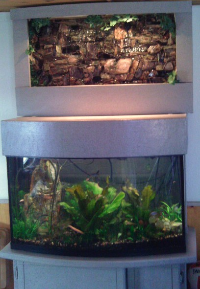 Click image for larger version  Name:my tank.jpg Views:47 Size:111.3 KB ID:27524