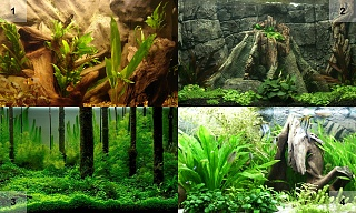 Click image for larger version  Name:Backgrounds1-4.jpg Views:224 Size:210.1 KB ID:28158