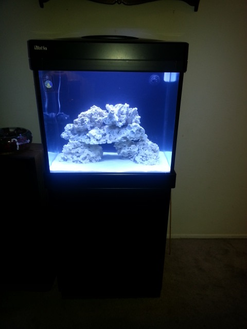 Click image for larger version  Name:New Red Sea max tank.jpg Views:48 Size:51.9 KB ID:282005