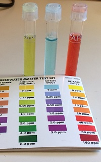 Click image for larger version  Name:watertest6.jpg Views:28 Size:147.2 KB ID:300177