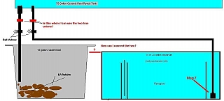 Click image for larger version  Name:my_sump_v2.jpg Views:145 Size:40.3 KB ID:329