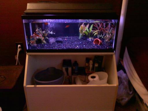 Click image for larger version  Name:Fish tank on toybox.jpg Views:52 Size:23.0 KB ID:34452