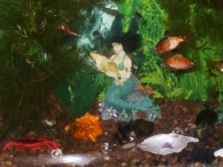 Click image for larger version  Name:8x10 new Christmas mermaid, Dec.jpg Views:130 Size:137.8 KB ID:36697