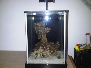Click image for larger version  Name:fluval 3.jpg Views:332 Size:156.6 KB ID:36944