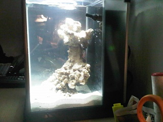Click image for larger version  Name:fluval 4.jpg Views:384 Size:148.7 KB ID:36945
