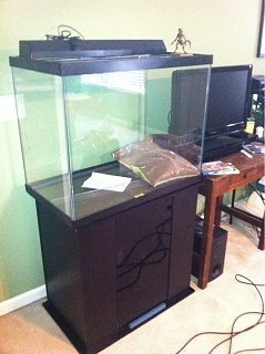 56 gallon column work in progress aquarium advice for Column fish tank
