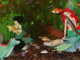 Click image for larger version  Name:resized 20% Two mermaids, dojo kissing up.jpg Views:211 Size:211.9 KB ID:39511