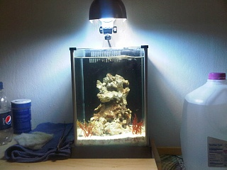 Click image for larger version  Name:fluval 1.jpg Views:334 Size:176.7 KB ID:42161