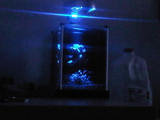 Click image for larger version  Name:fluval 2.jpg Views:307 Size:108.9 KB ID:42162