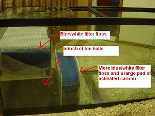 Click image for larger version  Name:sump_2.jpg Views:155 Size:50.5 KB ID:59