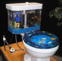 Name:   toiletfishtank.jpg Views: 226 Size:  7.2 KB