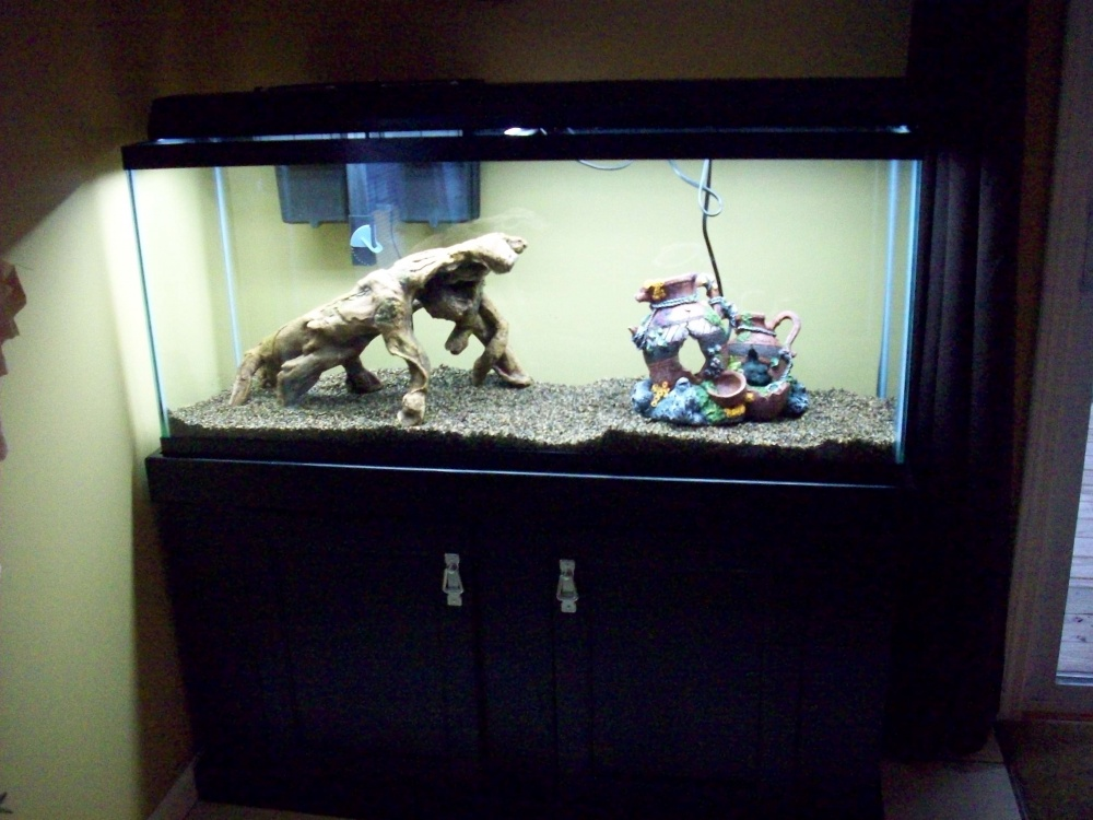 Click image for larger version  Name:tank pictures 003.jpg Views:37 Size:216.9 KB ID:70238