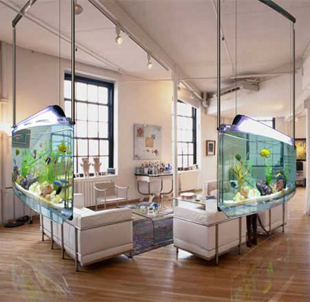 Click image for larger version  Name:asp_aquarium.jpeg Views:49 Size:43.0 KB ID:77553