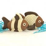 rare cocoa fish